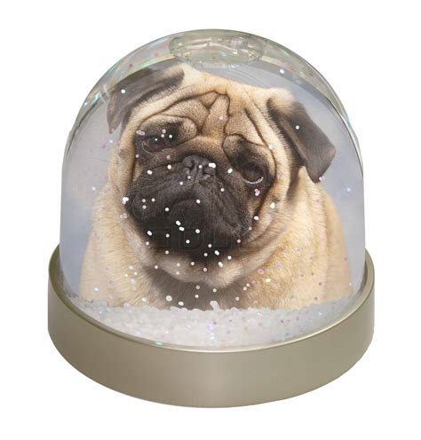 pug snow globe fawn pug snow dome globe waterball gift ebay