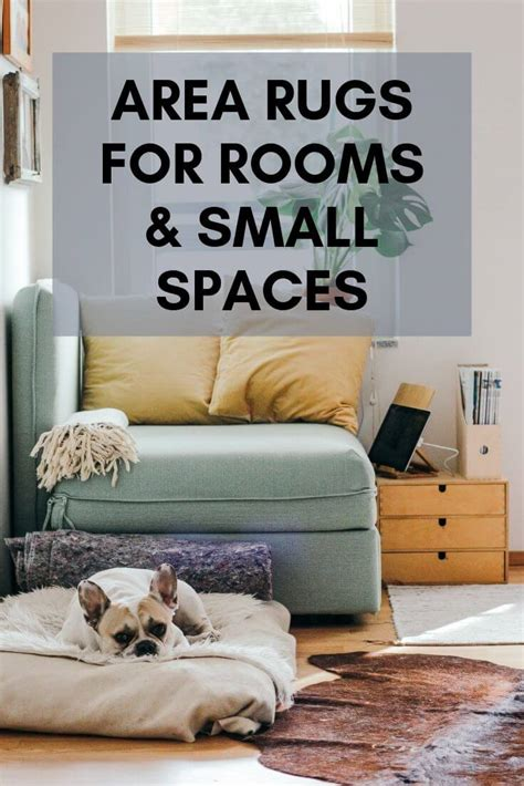 decorating small spaces  area rugs clean living chem dry