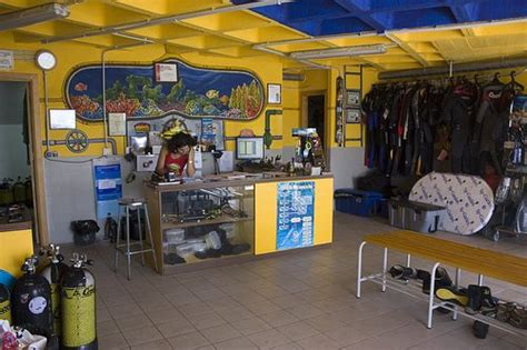 dive shop what is the difference between a padi dive center and a