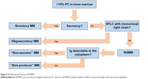 light chain myeloma prognosis multiple myeloma light chain decoratingspecial com