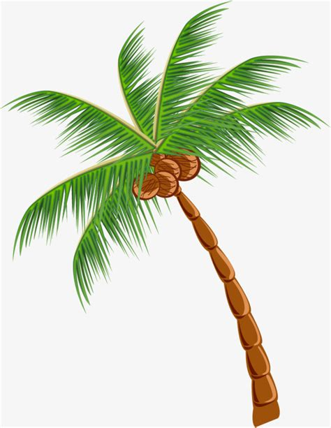 Cute Plant by Green Cartoon Coconut Trees Green Cartoon Coconut Trees