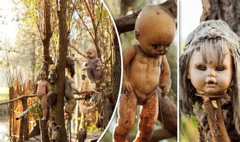 the haunted doll island mexico city s island of the dolls is hiding a haunting