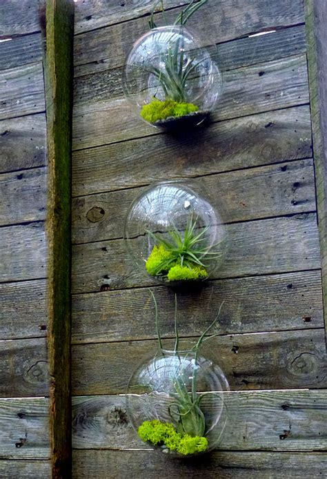 diy terrariums easy  garden glove