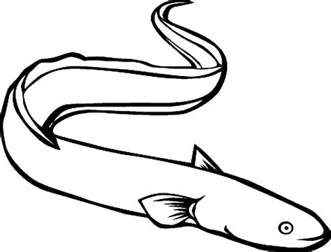 Eel Coloring Pages moray eel coloring pages