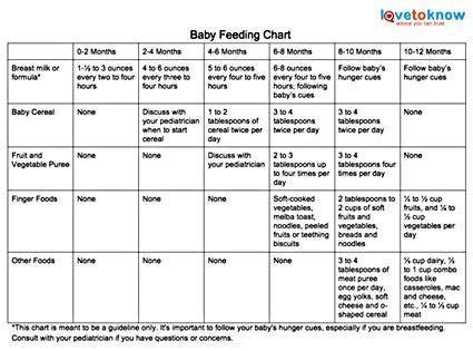 How Much Food Should You Feed Your Baby Lovetoknow Gro Years Change Table