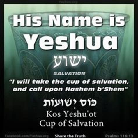 fulfilled prophecies and connections of yeshua hamashiach jesus the messiah tract book format books 1000 images about yeshua on rabbi jesus and