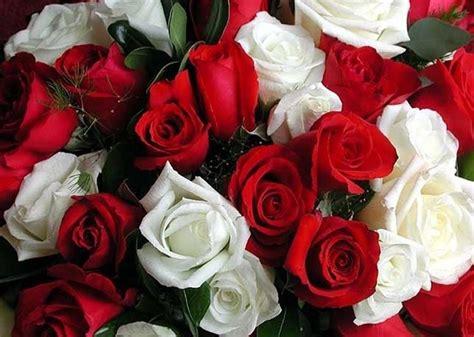 fiori sposa luglio fiori luglio matrimonio fiorista matrimonio fiori luglio