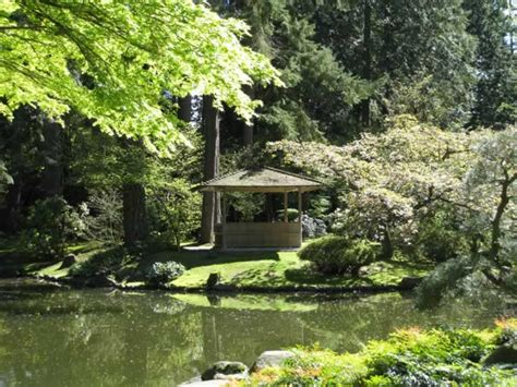 Ubc Botanical Garden Ubc Botanical Garden And Nitobe Memorial Garden Tj