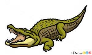 draw crocodile wild animals