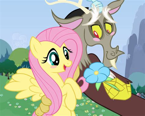 discord x fluttershy lemon fluttershy x discord www imgkid com the image kid has it