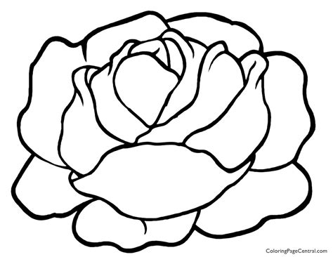 Lettuce 01 Coloring Page Coloring Page Central Pages To Color