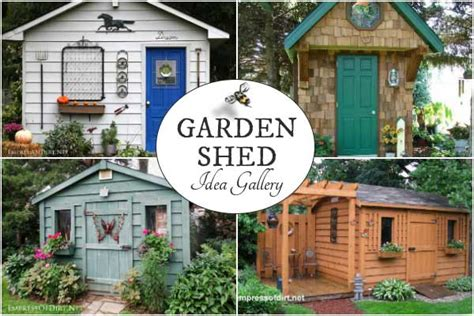 creative home garden shed designs empress  dirt