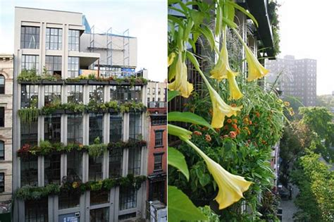 Vertical Garden Nyc Growing Up Vertical Gardens The Huffington Post