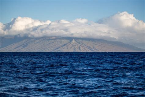 fast boat maui snorkel molokini crater in maui with redline tours
