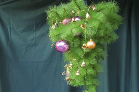28 best how to setup a live christmas tree christmas