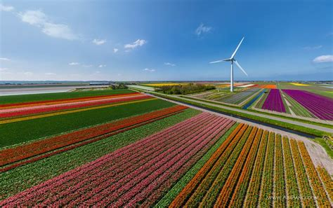 netherlands tulip fields map the country of tulips 360 176 aerial panoramas
