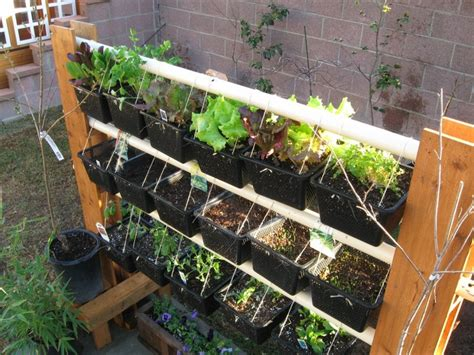 Vertical Garden Rack 42 Best Images About Huerto Urbano Vertical On