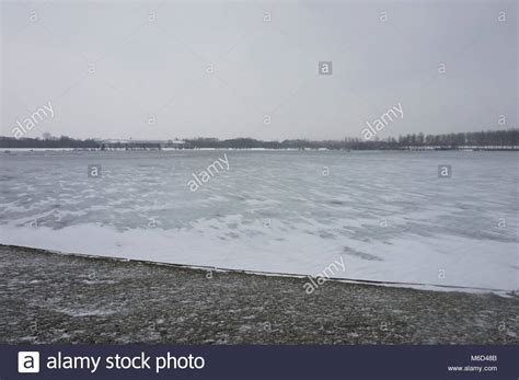 swan boats willen lake willen lake milton keynes stock photos willen lake