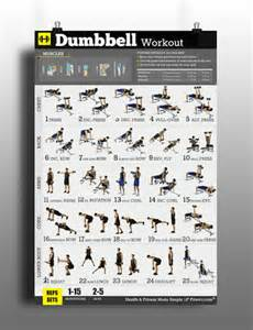 Weight Bench Workout Routine Beginners Dumbbell Workouts Poster For Men To Build Muscles Amp Lose Fat