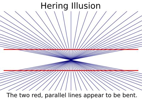 Availible by Hering Illusion Label Signs Symbol Optical Illusions