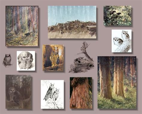 J Sharkey Sketches by Birds Forest