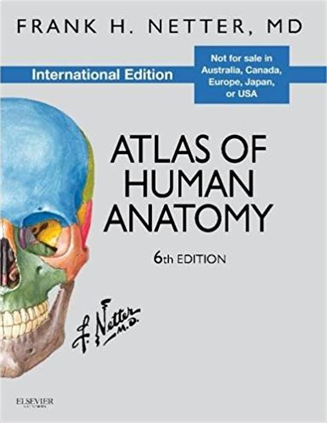 Atlas Of Human Anatomy Frank H Netter 6th Edition netter atlas of human anatomy pdf review free