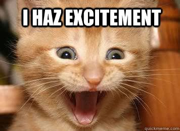 Meme For Excitement - excited cat memes image memes at relatably com
