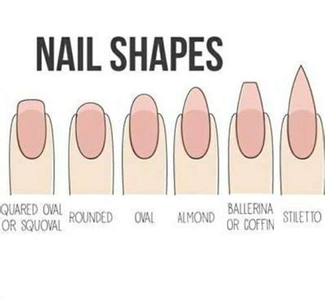 8 Nail Shapes And How To Choose The One For You by Best 25 Different Nail Shapes Ideas On Nails