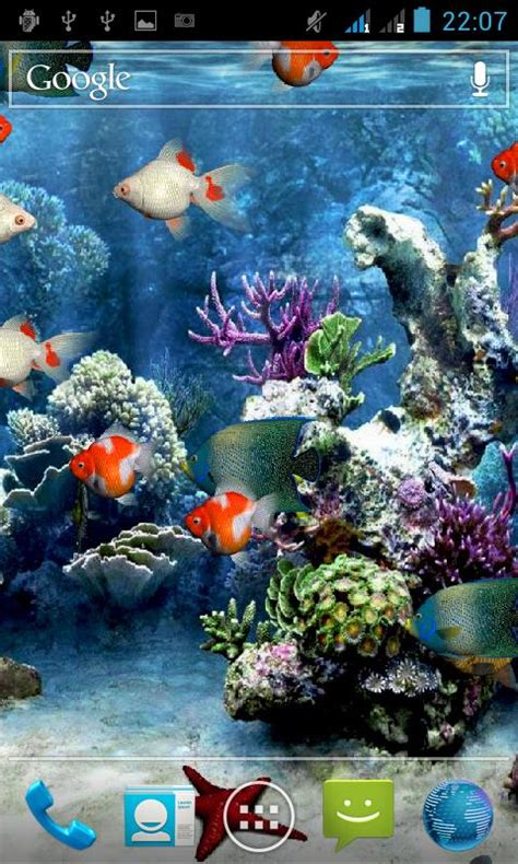 wallpaper animasi ikan hidup download gratis aquarium wallpaper hidup gratis aquarium