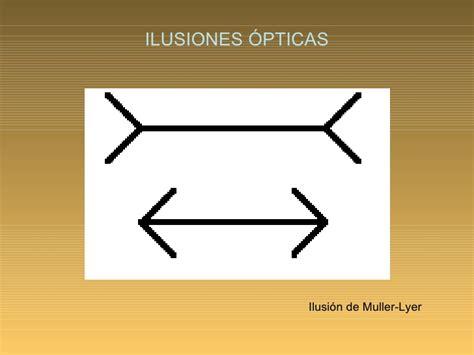ilusiones opticas muller lyer la percepcion