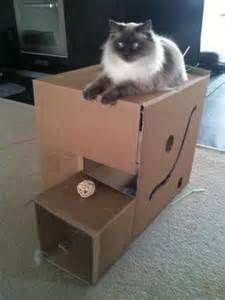 Cardboard boxes good for hiding make them more interesting by