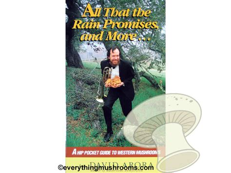 Pdf All That Promises More by All That The Promises And More A Hip Pocket Guide