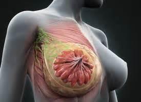 colite spastica alimentazione corretta bellezza salute