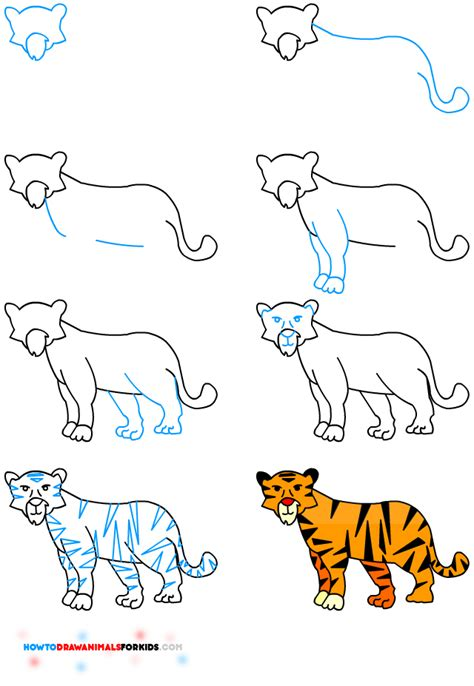 how to draw animals learn to draw for step by step drawing how to draw books for books draw animals for how to draw animals for