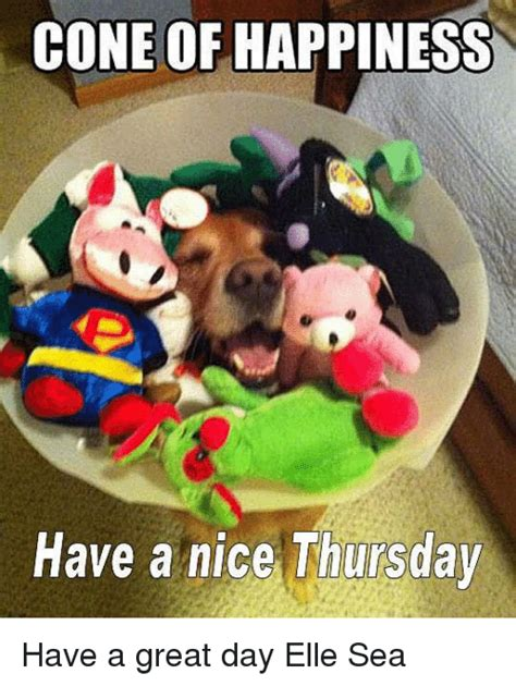 Happiness Meme - cone of happiness have a nice thursday have a great day