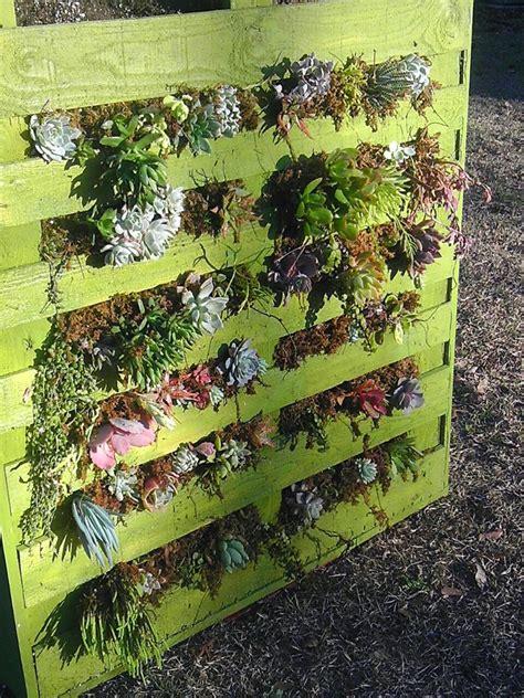 Vertical Succulent Garden Pallet Recycle Repurpose Reuse Verde Garden