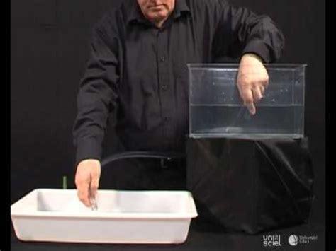comment remplir un syphon la r 233 ponse est sur admicile fr