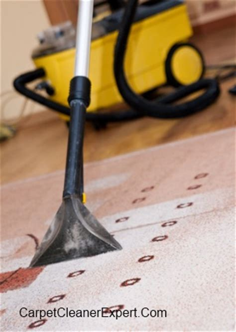 Rug Cleaning Companies by Choosing The Best Carpet Cleaning Companies Carpet
