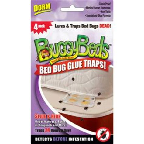 bed bug traps home depot buggybeds dorm pack bed bug glue traps detects and lures