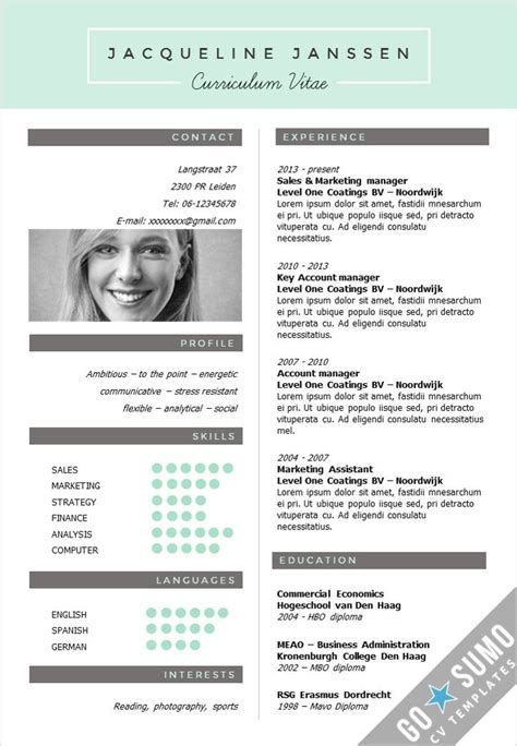 curriculum vitae template download doc from cv example word download