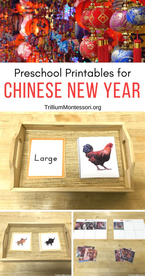 new year 2016 lesson plans for preschool new year preschool activities trillium montessori