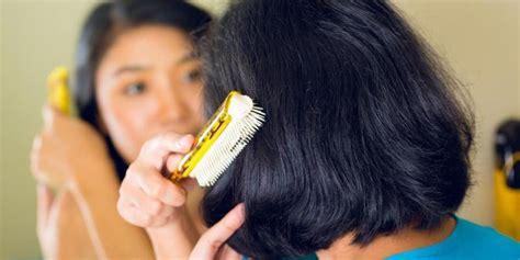 Obat Untuk Menghilangkan Kutu Beras 6 cara alami membasmi kutu rambut cintamela info