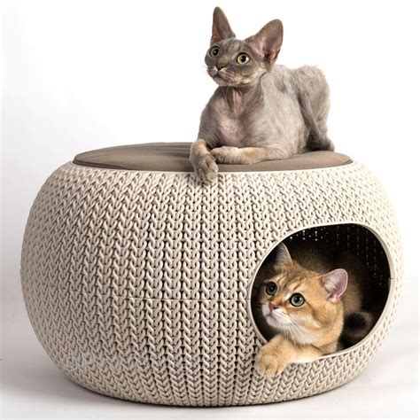 cozy pet home die katzenh 246 hle curver in der form