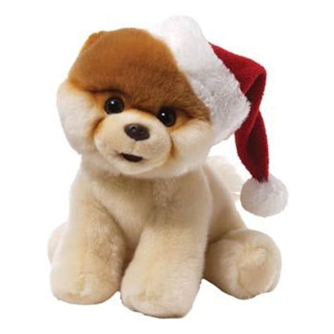 boo the dog christmas 17 best images about boo the worlds cutest on toys the gap and stuffed animals