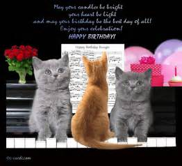 cats birthday boogie free ecards greeting cards 123 greetings