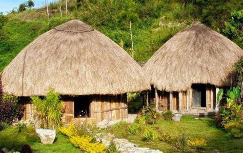 rumah adat provinsi papua barat pewarta nusantara
