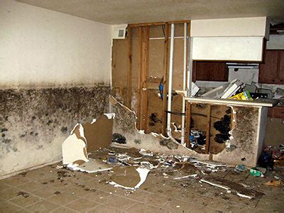 Schimmel In Der Wohnung Gesundheit 4983 by Schimmel Wohnung