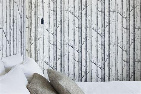Ripple Faucet blog dla ludzi z wn trzem tapety z brzozami
