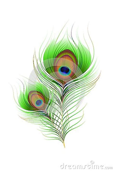 Home Decoration For Janmashtami by Colorful Peacock Feather Stock Photos Image 33124433