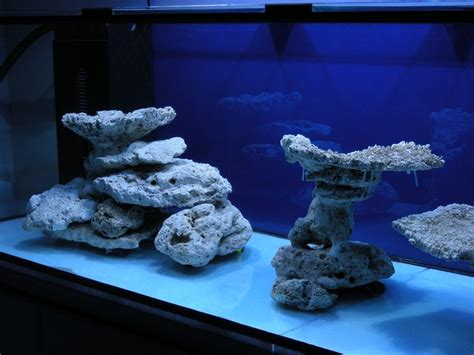 Marine Aquarium Aquascaping by Aquascaping Marine Minimalist Aquascaping Page 31